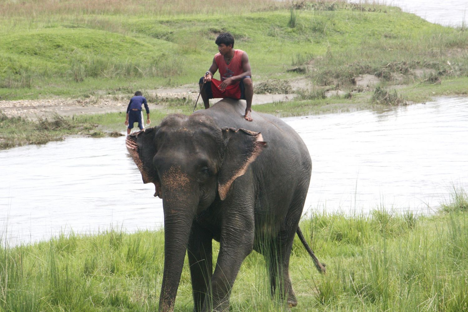 Elephant safari Sapana Lodge Chitwan Nepal