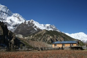 NEPAL - z Humde (3280 m.n.m.) do Manangu (3540 m.n.m.)