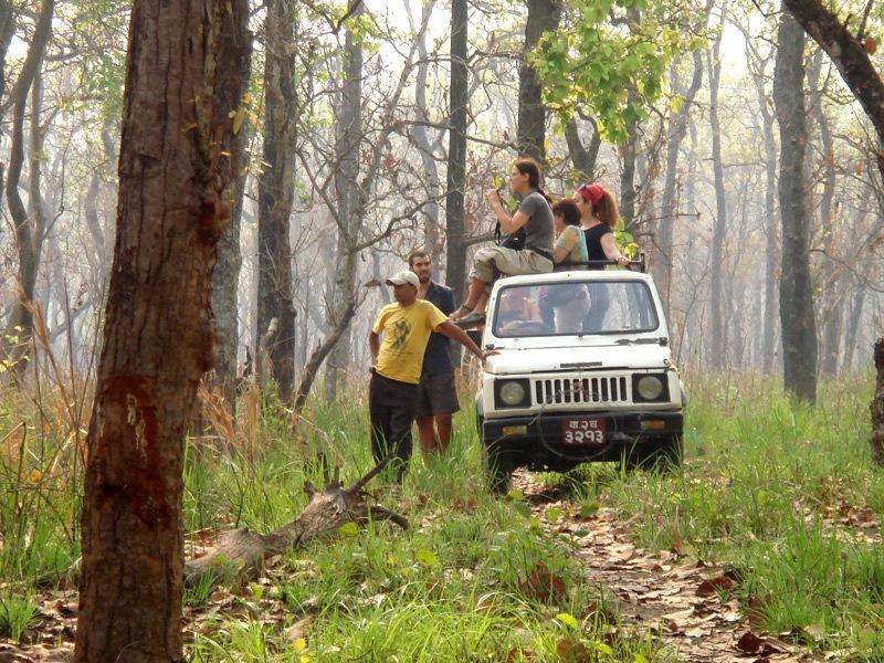 Chitwan Nepal: Wildlife and jeep safaris