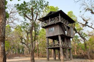 Jungle House - Tours & Excursions by Sapana Lodge Chitwan Nepal