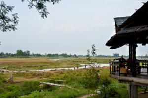 Restaurant Sapana Lodge Chitwan Nepal - overlooking the jungle and elephants